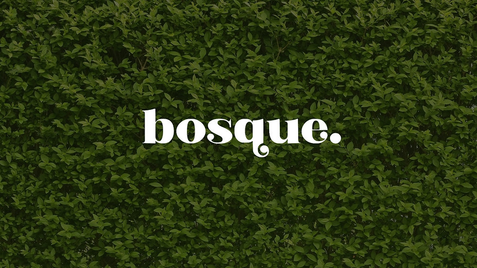 Bosque Bar-2.jpg