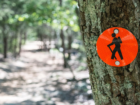 Combining a hike and a business meeting? The innovative new ways companies are sparking creativity