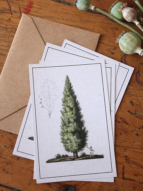 Pack postales Navideñas