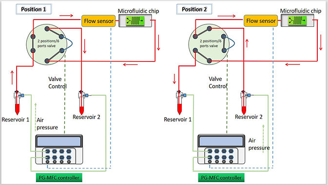 microfluidic recirculation system diagram, organ on a chip, cell culture, perfusion system, precigenome