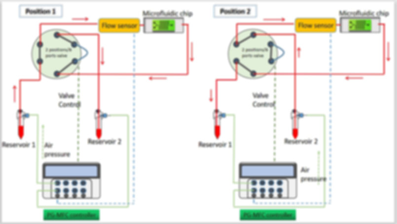 microfluidic recirculation system diagram, organ on a chip, cell culture, perfusion system, precigenome