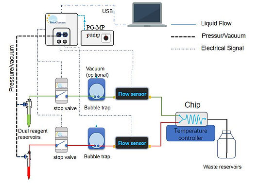 duplex perfusion system_diagram_B.JPG