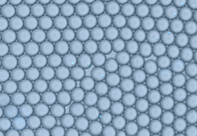 droplets.png