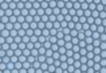 droplet generation, droplet generator, microfluidic droplet, droplet generation chip, droplet generator chip, droplet cell isolation, cell encapsulation