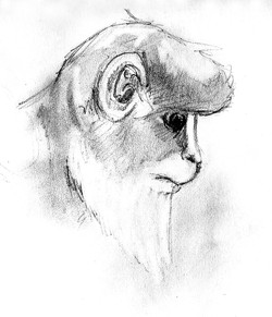 monkey_4601599459_o