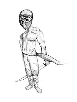 ninja_4601586945_o