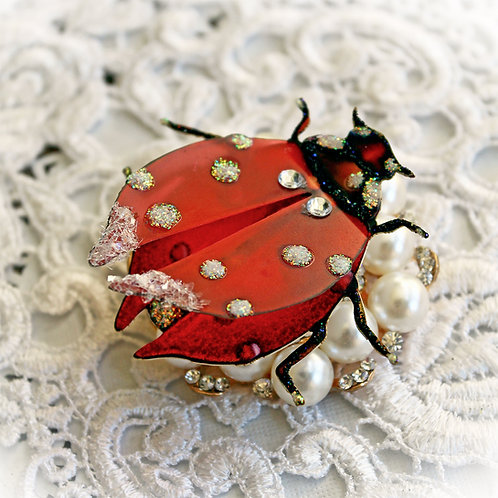 Lady Bug Glass Wing On Premium Paper Body