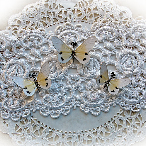 Sweet Dreams Premium Paper Butterflies In Buttercream