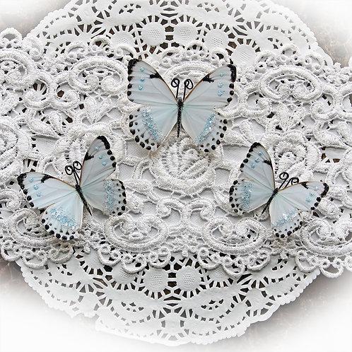 Tiny Dancer Premium Paper Glitter Glass Butterflies