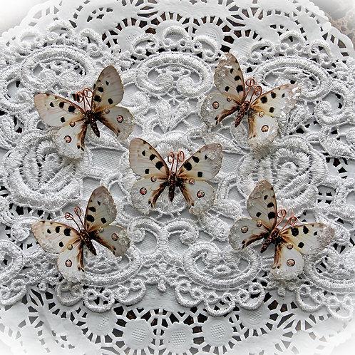 Tiny Treasures True Love Story Premium Paper Glitter Glass Butte