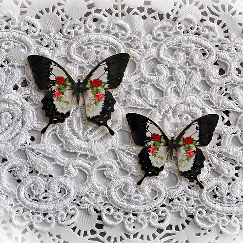 Printed Beautiful Board Small Precious Keepsakes Butterflies Set Of 2