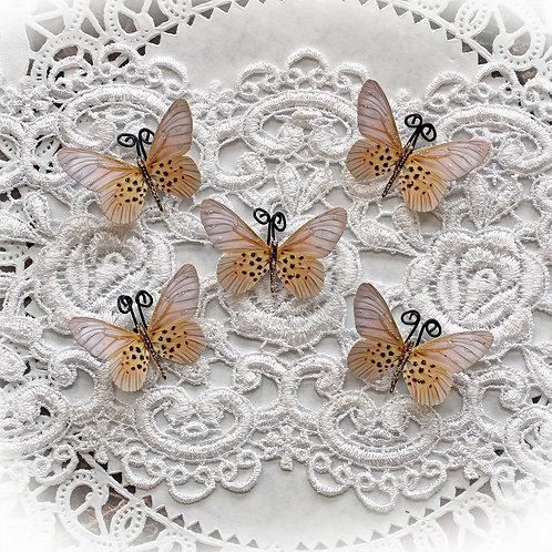 Tiny Treasures Champagne Premium Paper Butterflies Set
