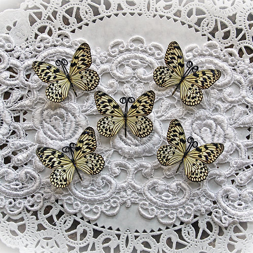Tiny Treasures Glamorous Premium Paper Butterflies Set