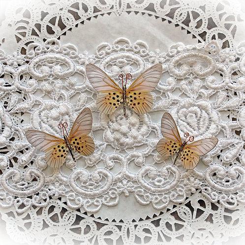 Champagne Dreams Premium Paper Butterflies