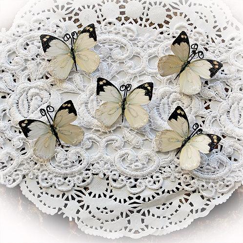 Tiny Treasures Delicate Beauty Premium Paper Glitter Glass Butterflies