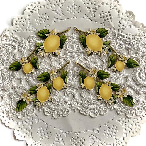 Printed Beautiful Board Small Lemon Blossom Branches  Laser Cut Chipboar