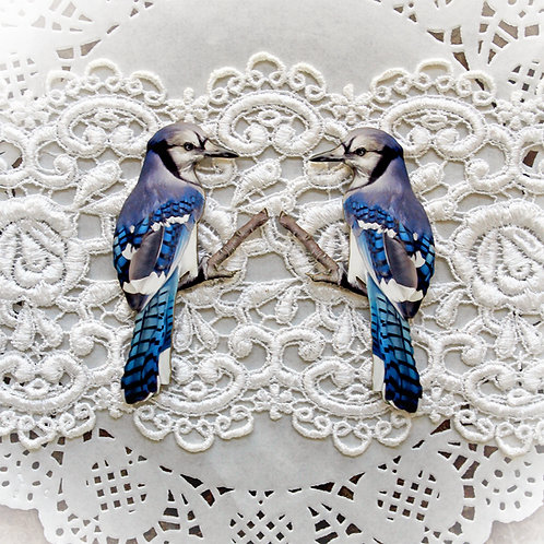 Printed Beautiful Board Small Blue Jay Chipboard