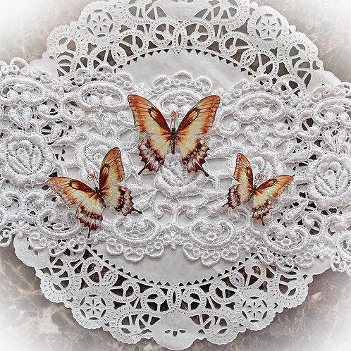 Salted Caramel Premium Paper Glitter Glass Butterflies