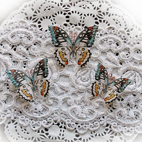 Phantasy Premium Paper Glitter Glass Butterflies