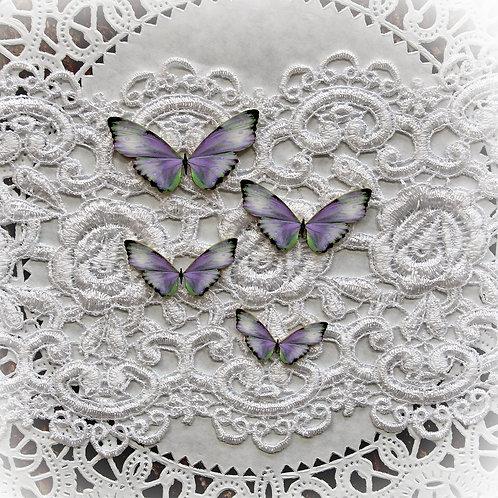 Printed Beautiful Board Tessie Butterflies Laser Cut Chipboard Set