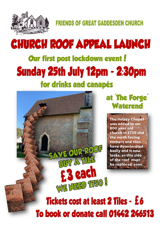 Roof Appeal party poster.jpg