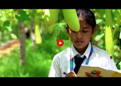 Sanskriti 2 thumbnail