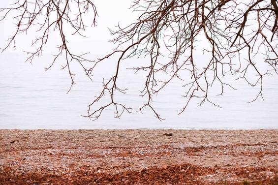red-sand-claire-jaillard