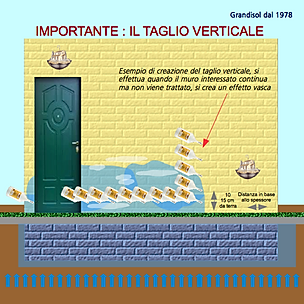 grafico per sito verticale.png