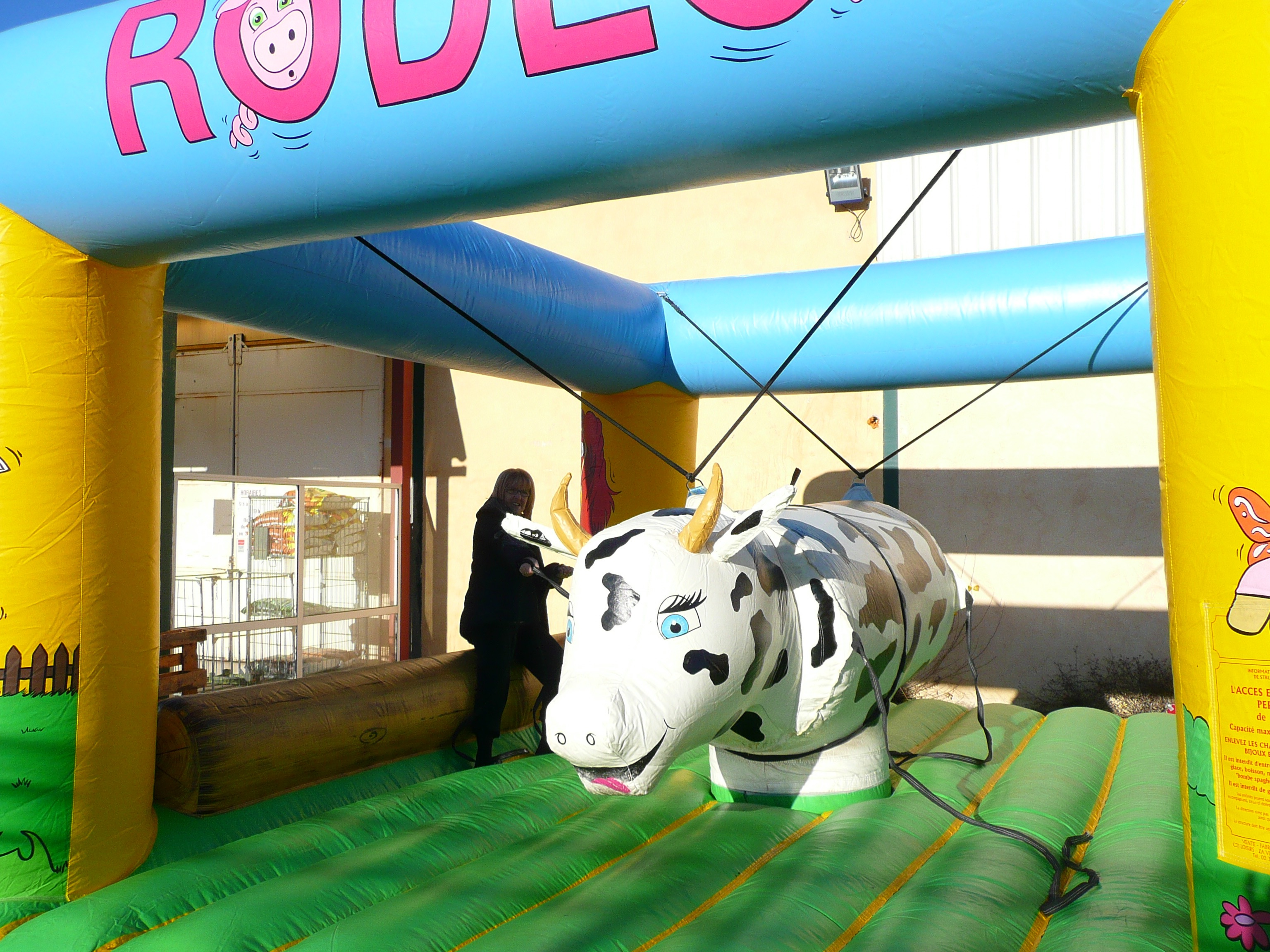 Rodéo Vache
