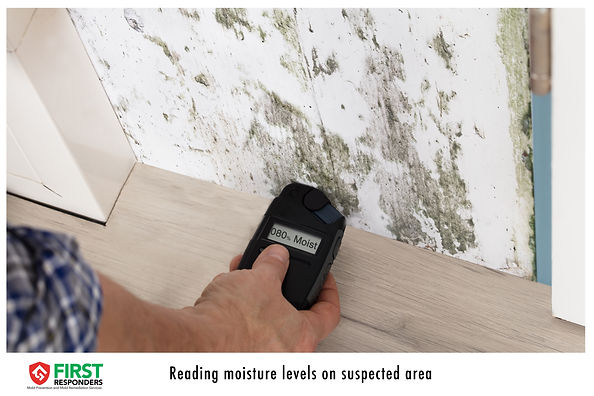 Moisture testing. Mold Prevention. Mold Remediation. Mold Consulting. Mold First Responders.