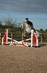 grey racehorse jump