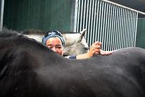 Racehorse chiropractor