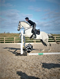 jump horse