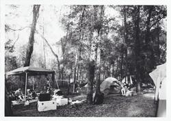 Tents Hulaween - Fiber Based