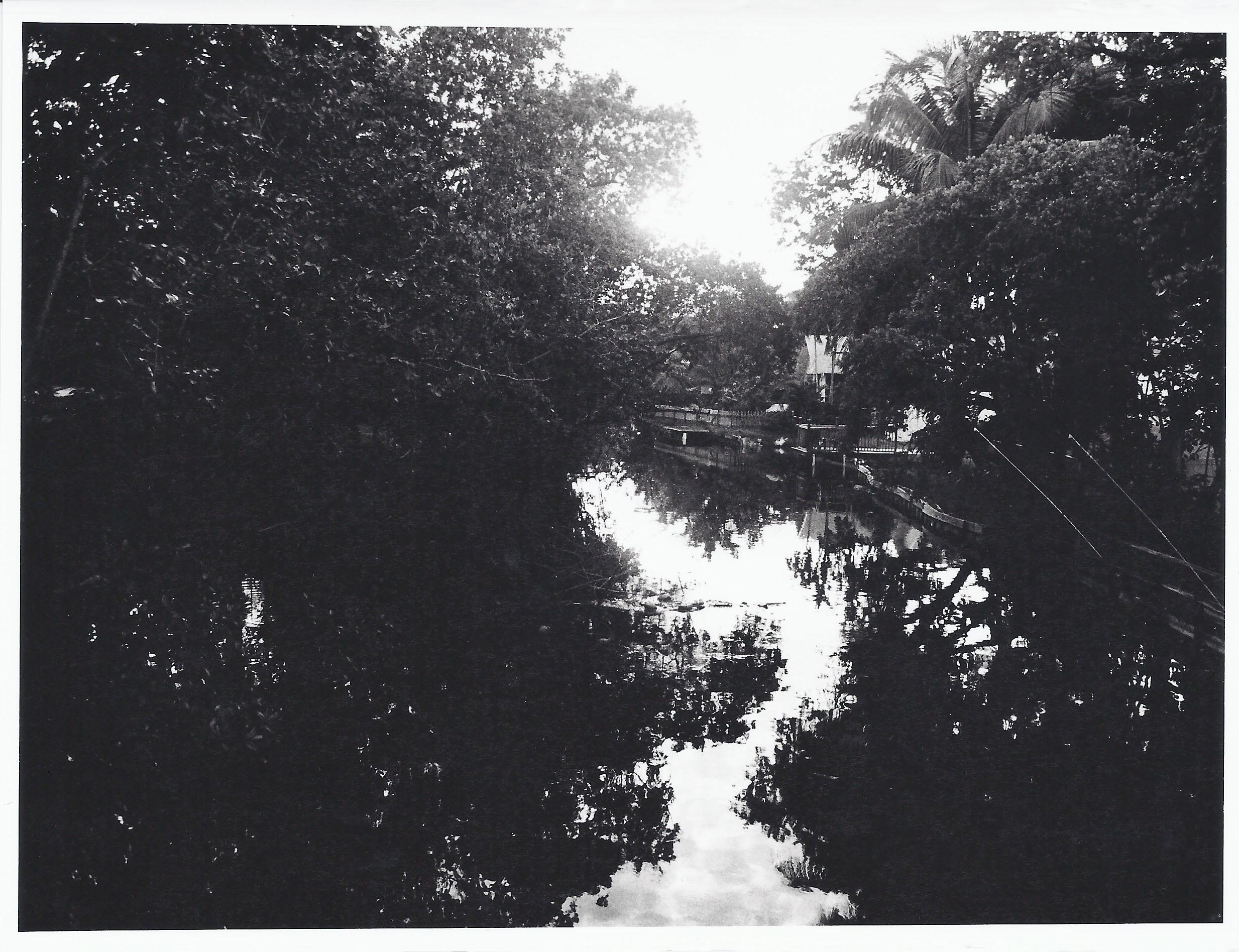 Reflections - Fiber Based