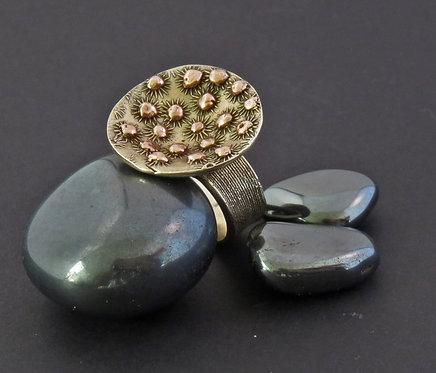 Micro Bio Ring