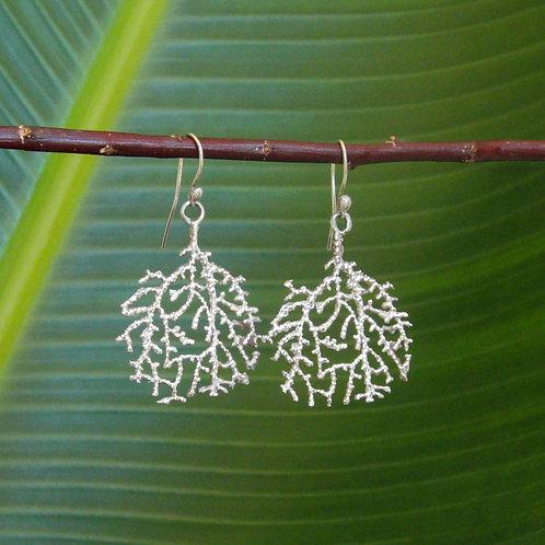 Coral Fan Earrings