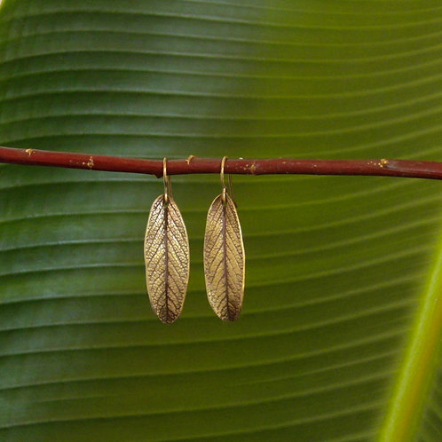 Long Sage Earrings