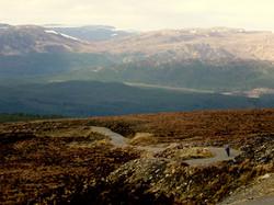 Descent into Glen Affric