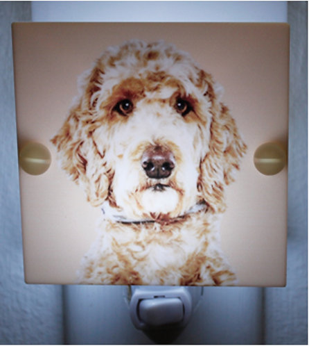 Goldendoodle Fluffy Dog Night Light Hand Made With LED and Free Ship