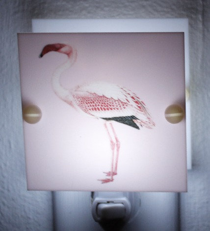 Beautiful Pink and Red Flamingo Bird Hand Made Night Light with Free Ship & LED