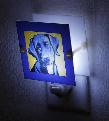 Colorful Artsy Black Labrador Dog Night Light Plastic Square LED