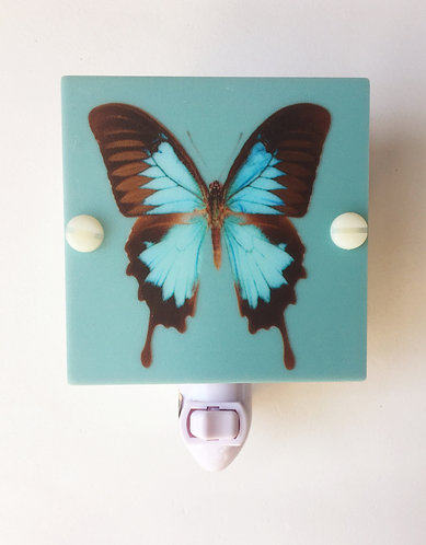 Blue & Brown Butterfly Plastic Night Light Hand Made With LED & Free Shipping