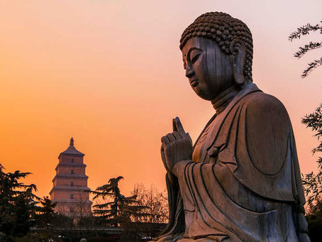 How Simple Buddhist Principles Can Enhance Human Evolution