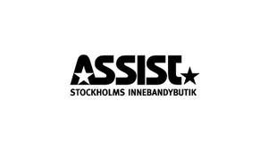 Assist logo_ny.png