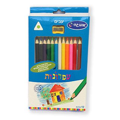 עפרונות צבעוניים עבים אומגה