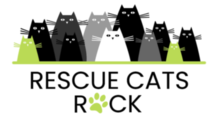 RESCUE CATS ROCK