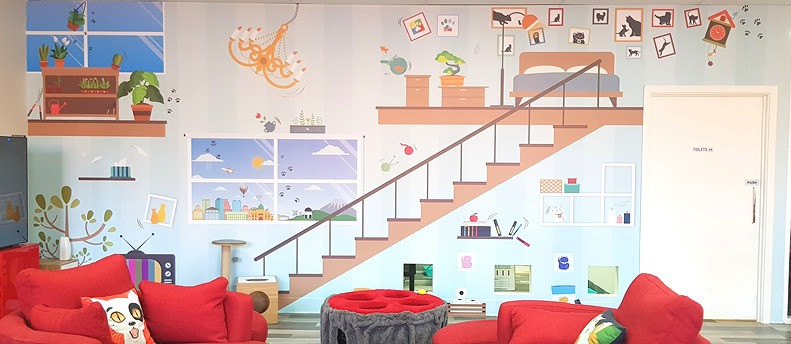 The Cat Lounge at Neko HQ