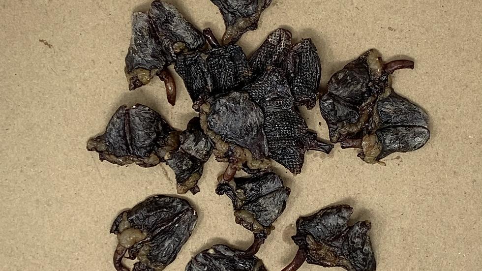Air Dried Chicken Hearts
