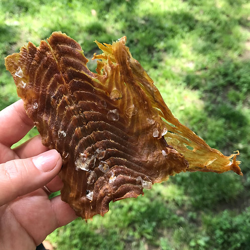 Wild Caught Salmon Meaty Pieces